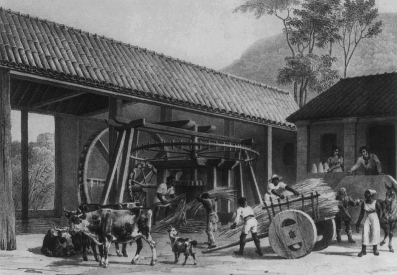 Brazilian sugar mill